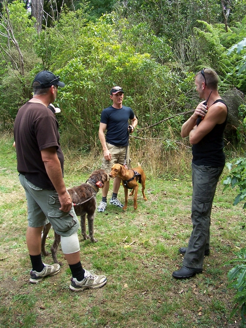 Hunters and their dogs being prepared for the Kiwi Avoidance Training session