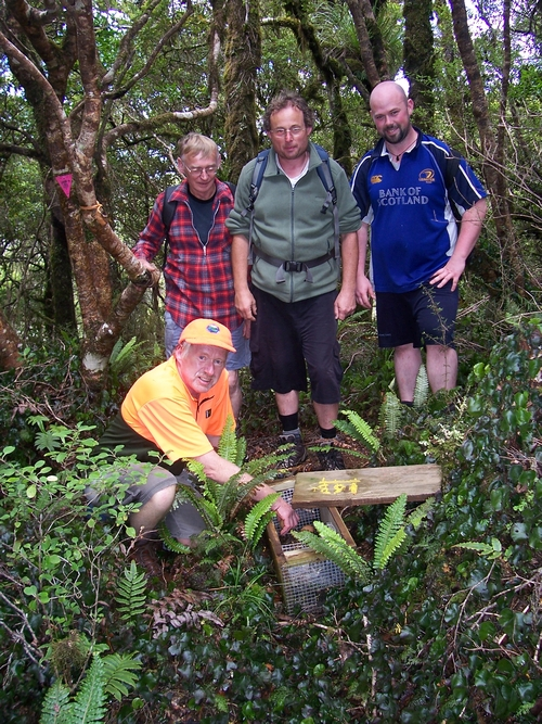 A band of merry men spotted on MSR4 in the Rimutaka Forest Park